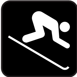 Download free sport ski icon