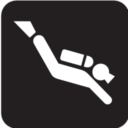 Download free sport leisure diving icon