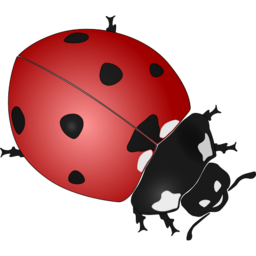 Download free red dot animal black ladybug insect icon
