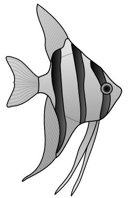 Download free fish animal icon
