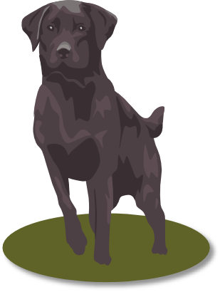 Download free animal dog icon