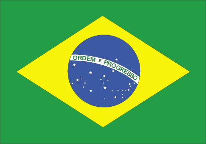 Download free flag brazil country icon