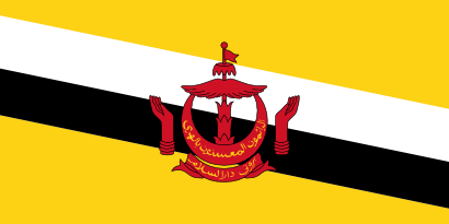 Download free flag brunei country icon