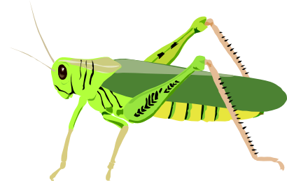 Download free animal insect grasshopper icon