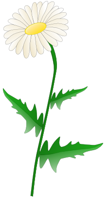 Download free flower icon