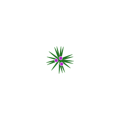 Download free round green violet star icon