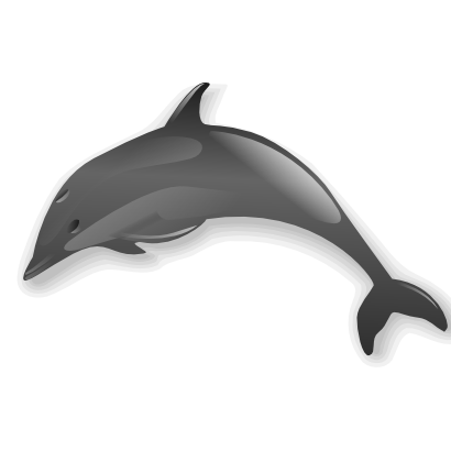 Download free animal dolphin icon