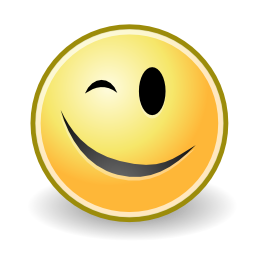 Download free eye face smiley wink icon