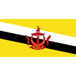 Download free flag brunei icon