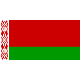 Download free flag belarus icon