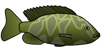 Download free fish animal food icon