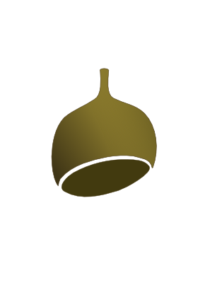 Download free food acorn icon