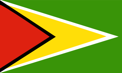 Download free flag guyane country icon