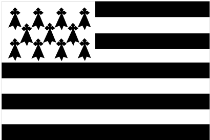 Download free flag brittany icon