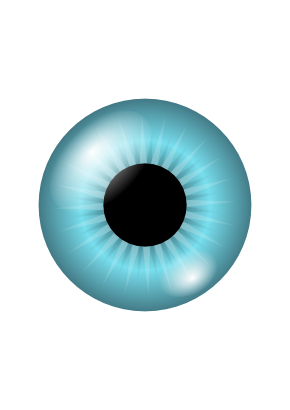 Download free blue round eye icon