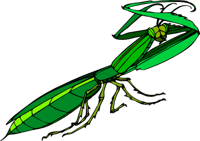 Download free green animal insect icon
