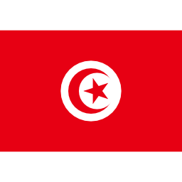 Download free flag tunisia icon