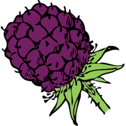 Download free violet food blackberry fruit icon