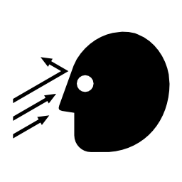 Download free pictogram head face attention object icon