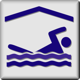 Download free human sport pool icon